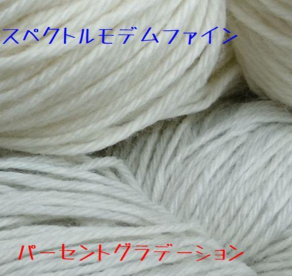 DSC_1137 rs.jpg