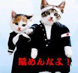 なめ猫.jpg