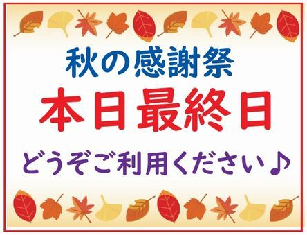 秋の感謝祭 最終日.jpg
