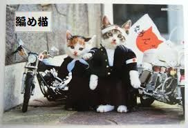 編め猫.jpg