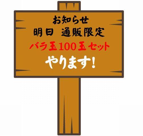 100玉セット.jpg