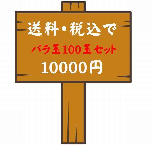 100玉セット 01.jpg