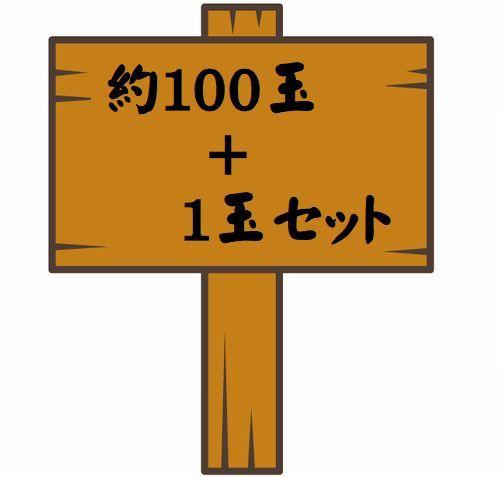 100玉セット 04.jpg