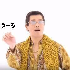 ピコ太郎 ウール.jpg